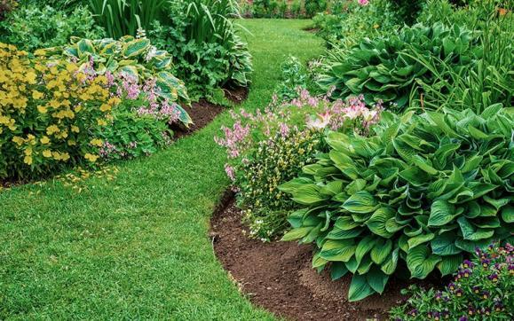 Aménagement jardin L'Isle-d'Abeau